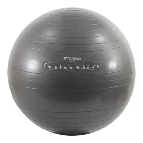 Exercise Ball 65cm